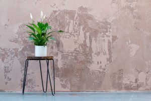 Convertir location nue en location meublée